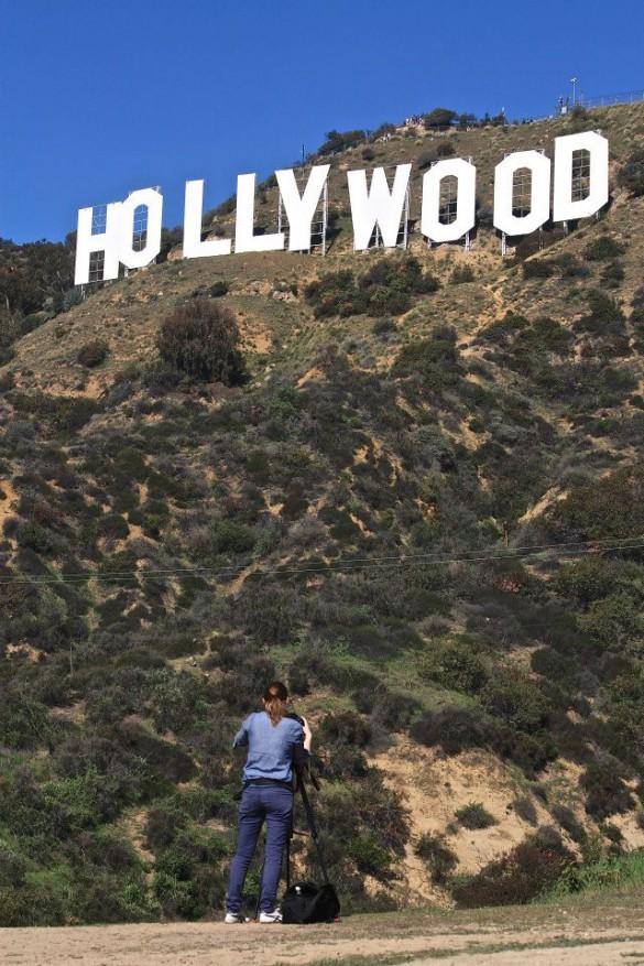 Der perfekte Ausblick auf den Hollywood-Schriftzug